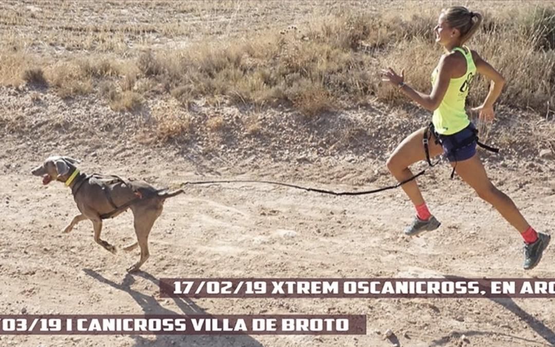 I CANICROSS VILLA DE BROTO