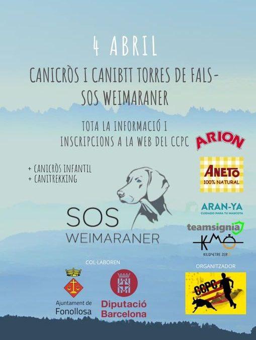 Canicross y Canibtt Torres de Fals – SOS Weimaraner